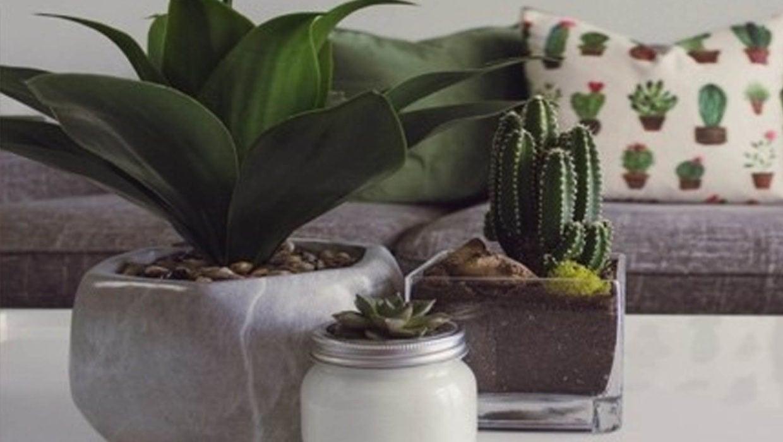 Bringing Florals Indoors
